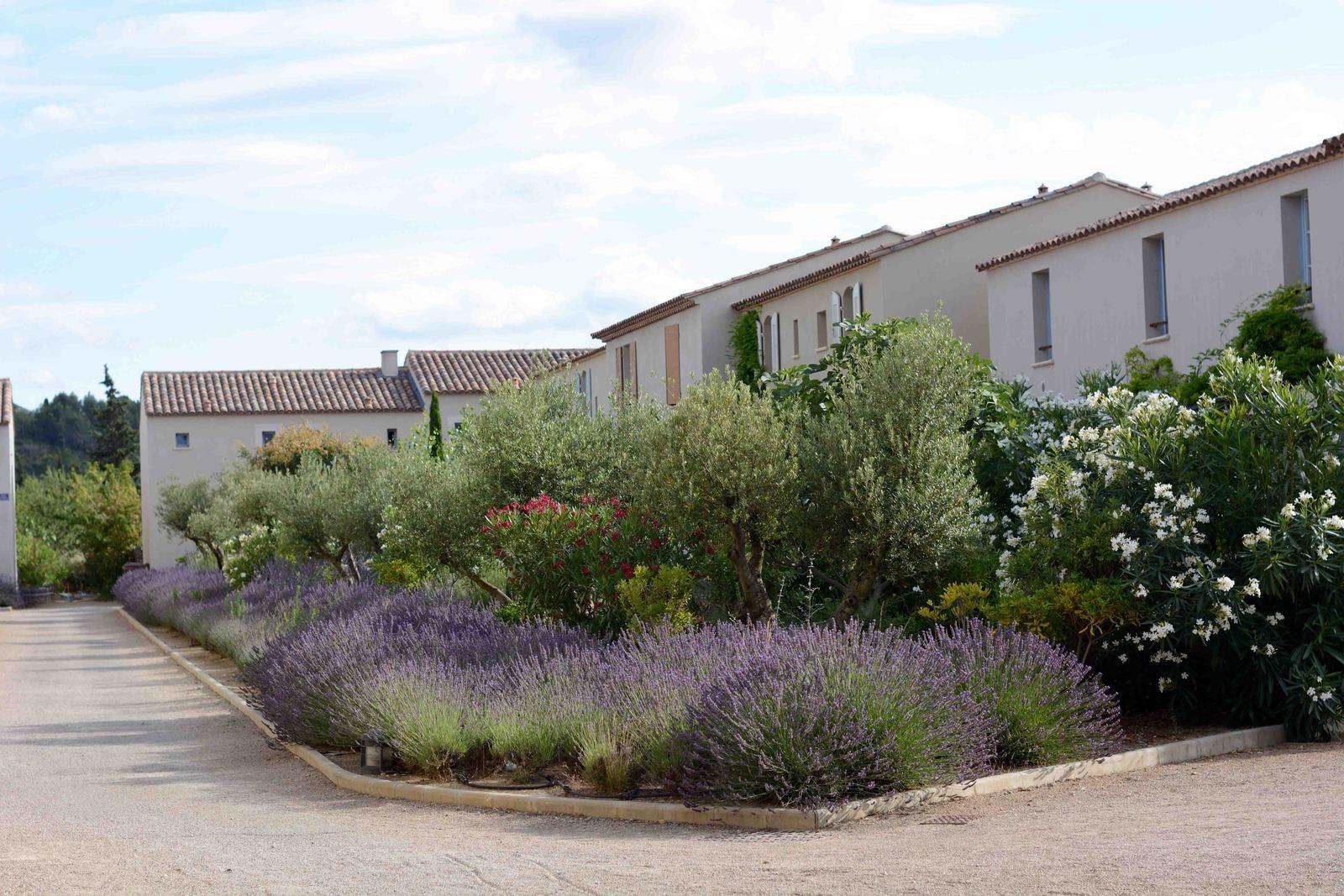 Les Jardins De St Benoit - ... Dans Un Cadre Propice À La ... serapportantà Les Jardins De St Benoit