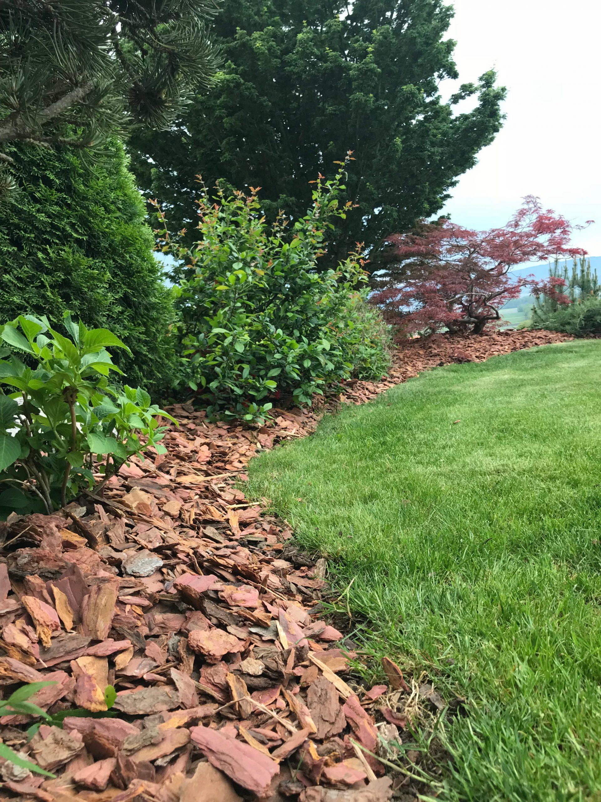Meldung: Ecorces De Mélèze – Ricoter Erdaufbereitung Ag encequiconcerne Ecorces Jardin
