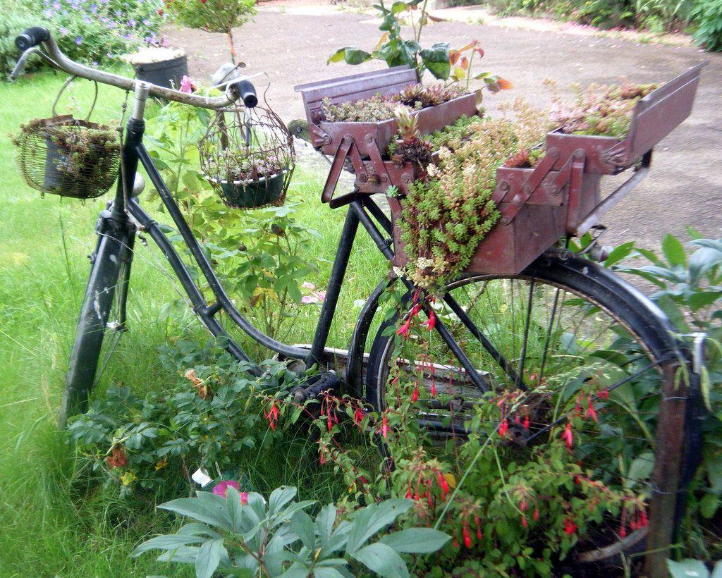 Mon Vieux Vélo Déco | Vieux Vélo, Idées Jardin, Déco Jardin encequiconcerne Velo Deco Jardin