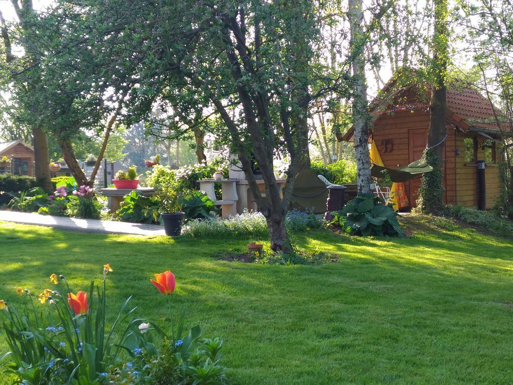 Orman Evi La Gypsy Caravan (Fransa Rivière) - Booking à Salon De Jardin But