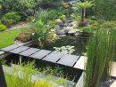 Plantes Pour Bassins Extérieurs | A Flore D'eau Votre ... serapportantà Plante Bassin De Jardin