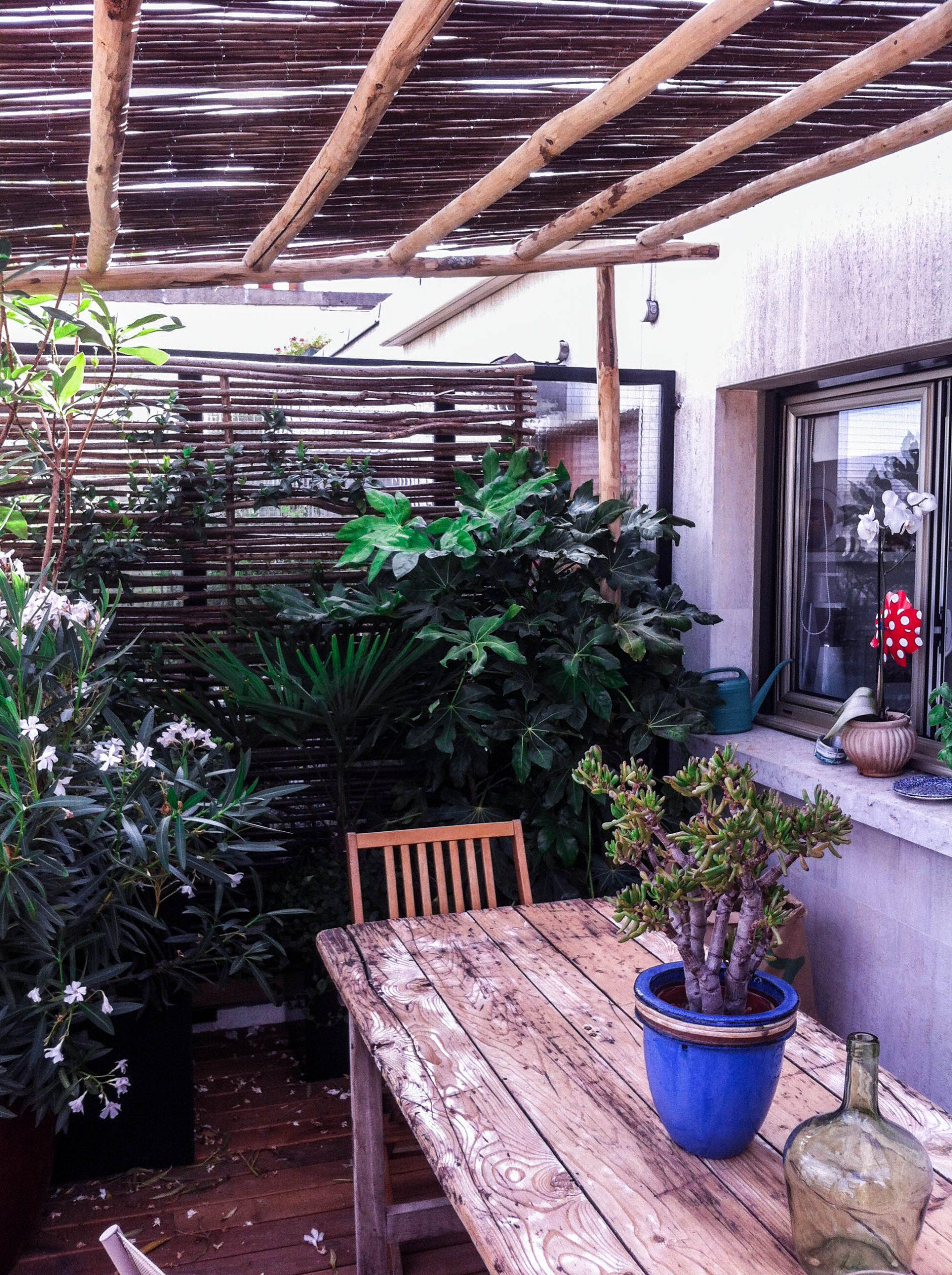 Portfolio De Swandy Wenker | 1G Solutions à Paillote Jardin