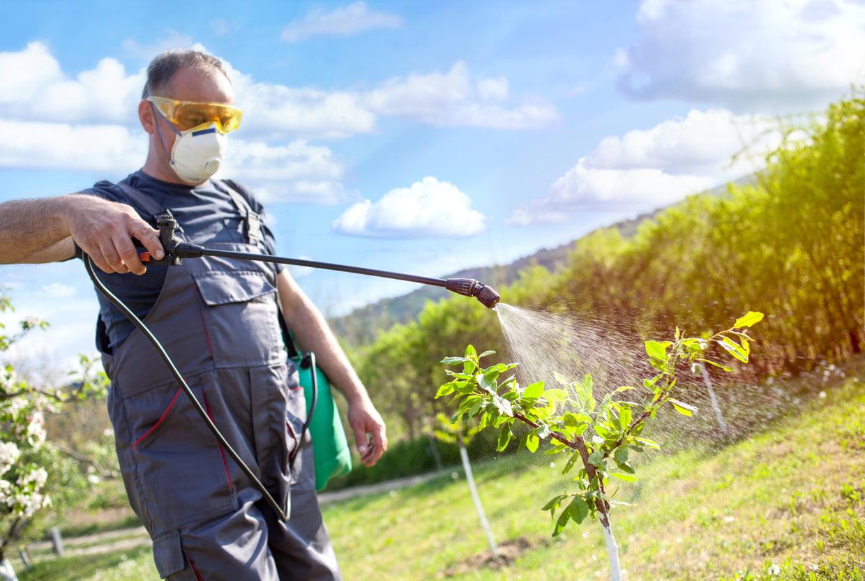 Pulvérisateur De Jardinage : Comment Bien Le Choisir pour Pulverisateur Jardin