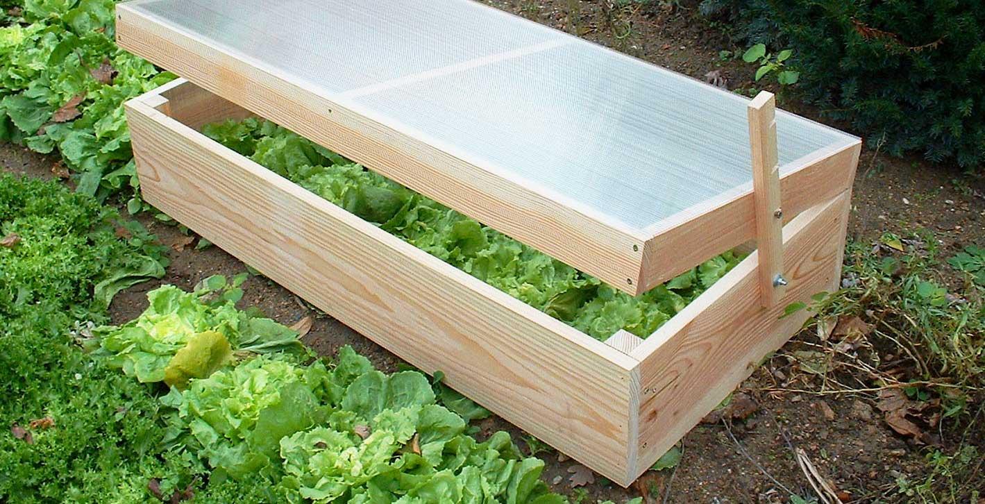 Récoltez Vos Légumes Plus Tôt En Suivant Les Conseils De ... intérieur Chassis De Jardin