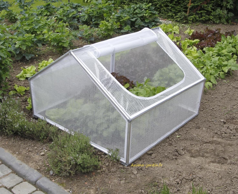 Serre Chassis De Jardin, 1M², Pour Semer Des Légumes, Pas ... intérieur Chassis Jardin