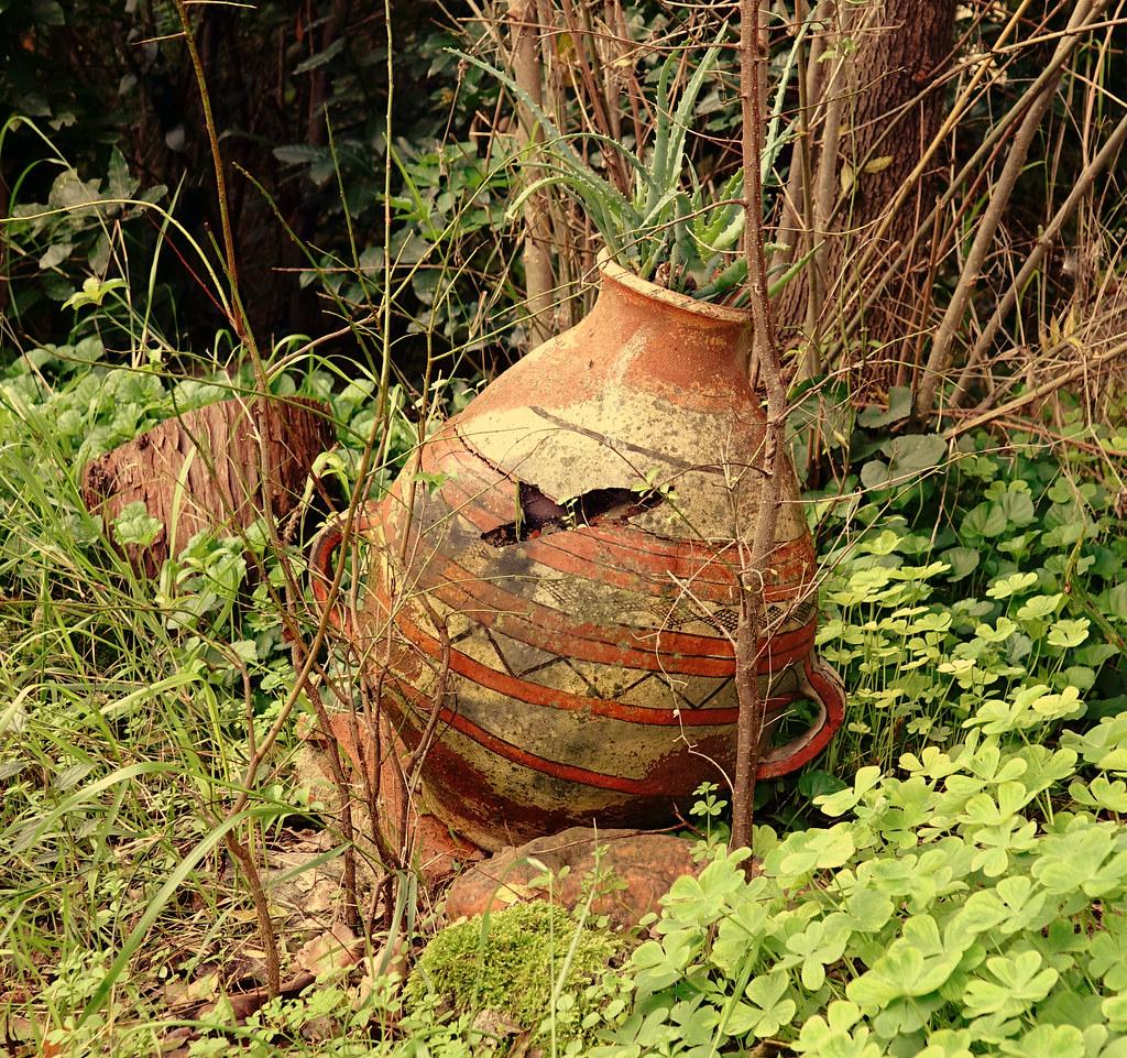 The World's Best Photos Of Naturemorte And Poterie - Flickr ... intérieur Jarre De Jardin