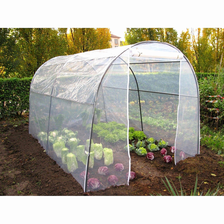 Tomates Une Serre Toute Simple Intéressant Fabriquer Petite ... dedans Serre De Jardin Leroy Merlin