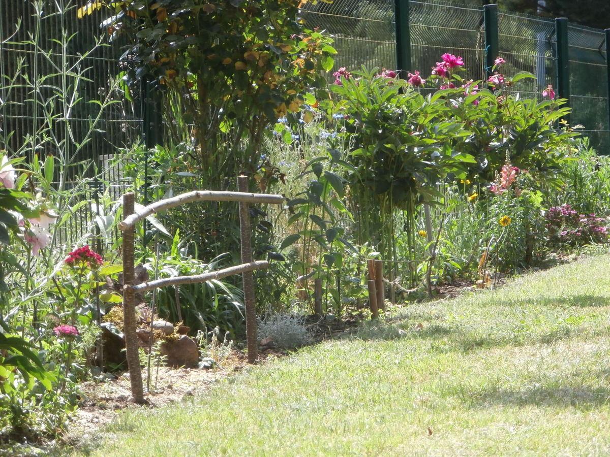 Une Toute Petite Barrière ... - Le Jardin Des Félins tout Petite Barriere Jardin