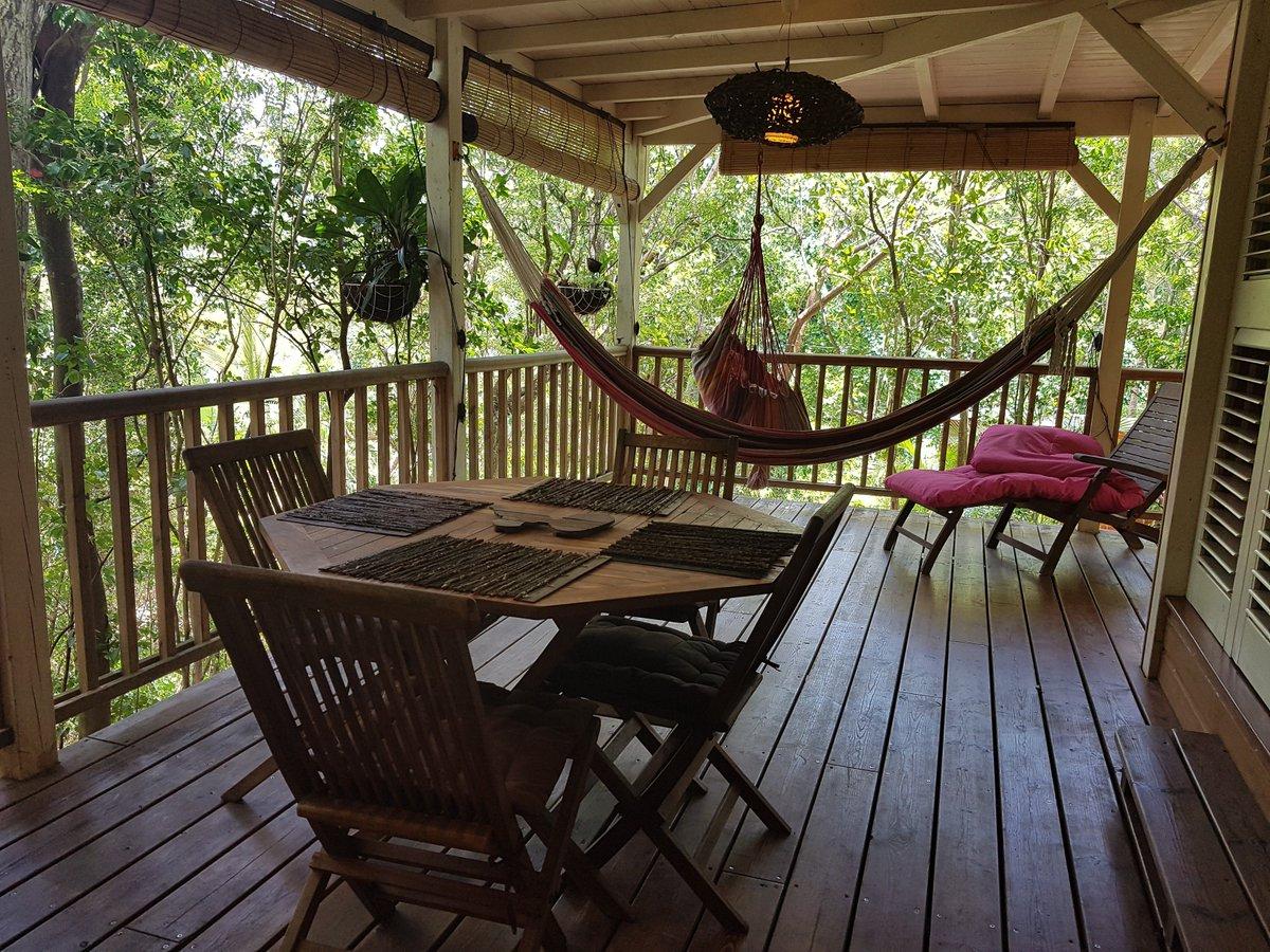 "Uživatel Au Jardin Des Colibris - Guadeloupe Na Twitteru: ""C ... serapportantà Au Jardin Des Colibris"