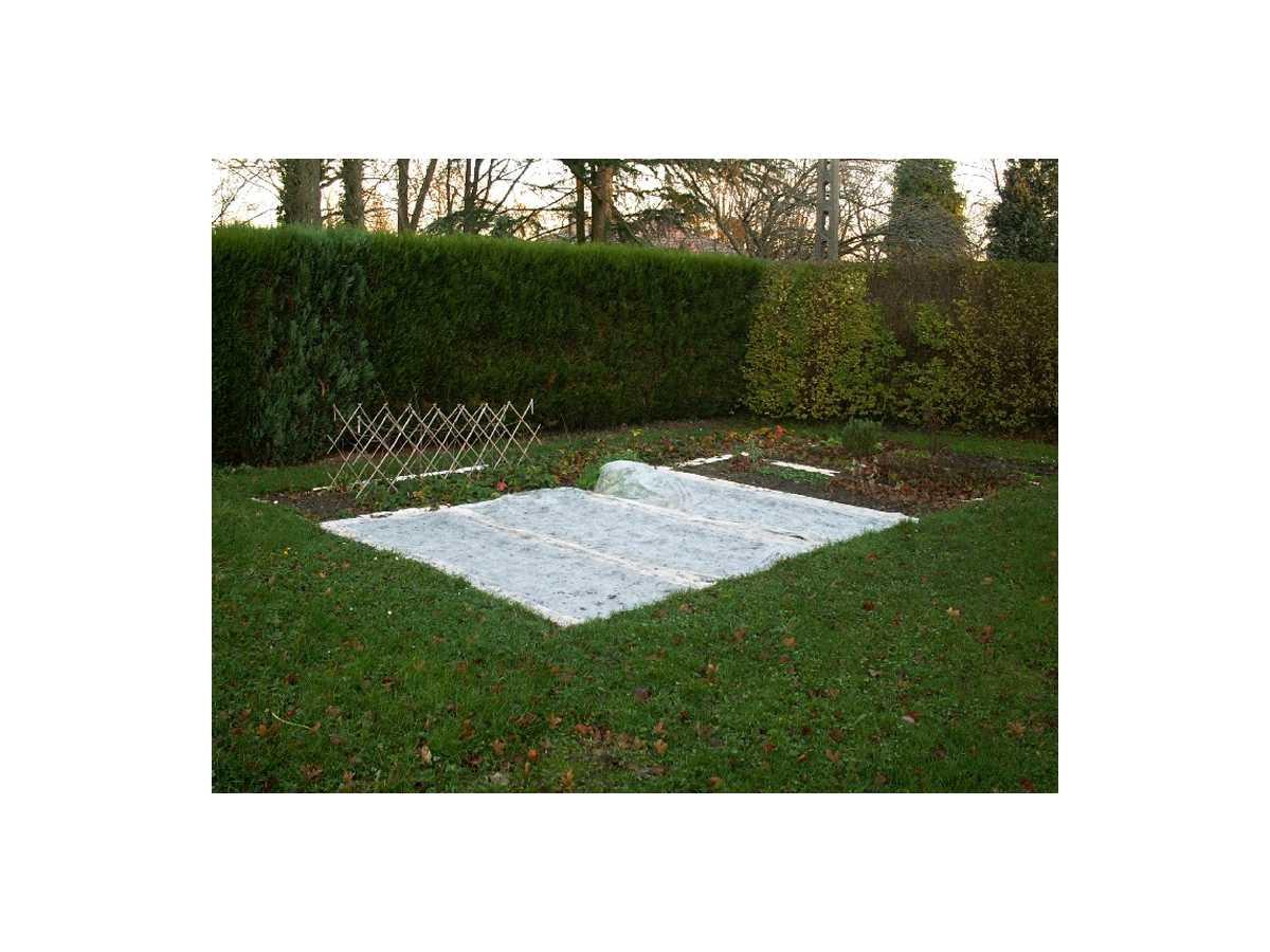 Voile D'hivernage 1,6Mx100M (30G/m2) à Bordure Jardin Pas Cher
