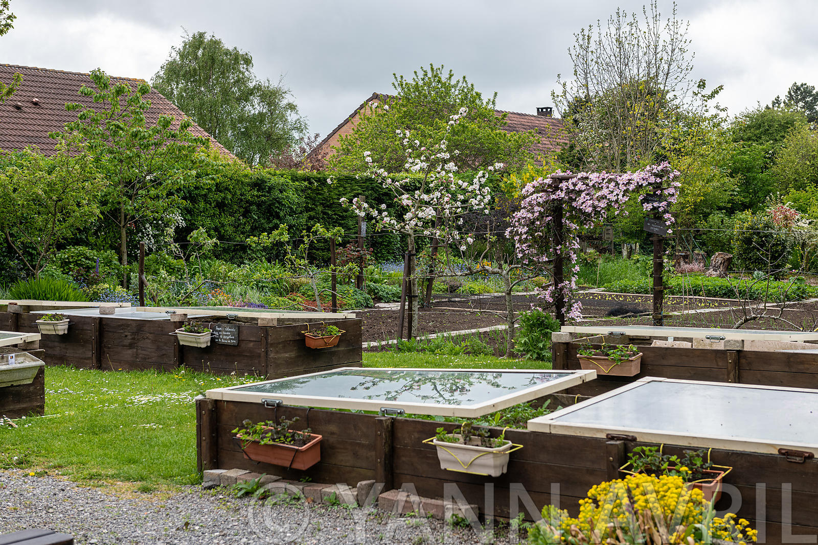 Yann Avril Photography | Garden And Nature Vegetables Under ... dedans Chassis Jardin