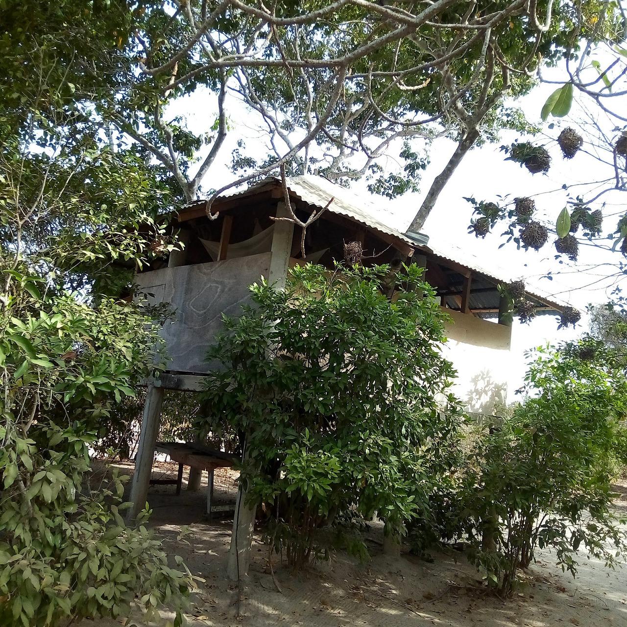 Ziguinchor Region Seyahati, 2020 - Tripadvisor avec Paillote Jardin