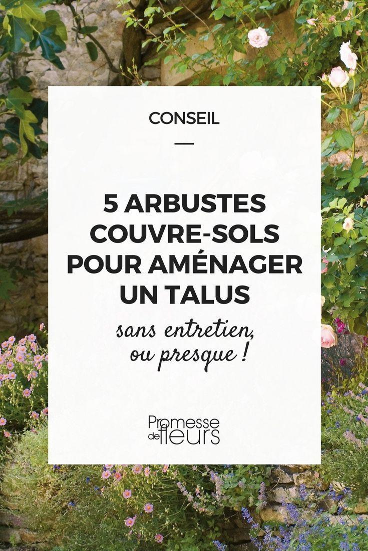 5 Arbustes Couvre-Sols Pour Aménager Un Talus (Avec Images ... tout Aménager Un Talus Photos