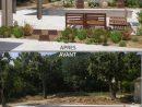 Aménager Autour De La Piscine Un Espace Jardin Sec ... avec Mon Aménagement Jardin Piscine