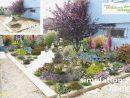 Awesome Logiciel Paysagiste 3D Gratuit | Plants destiné Logiciel Paysagiste Jardin Gratuit