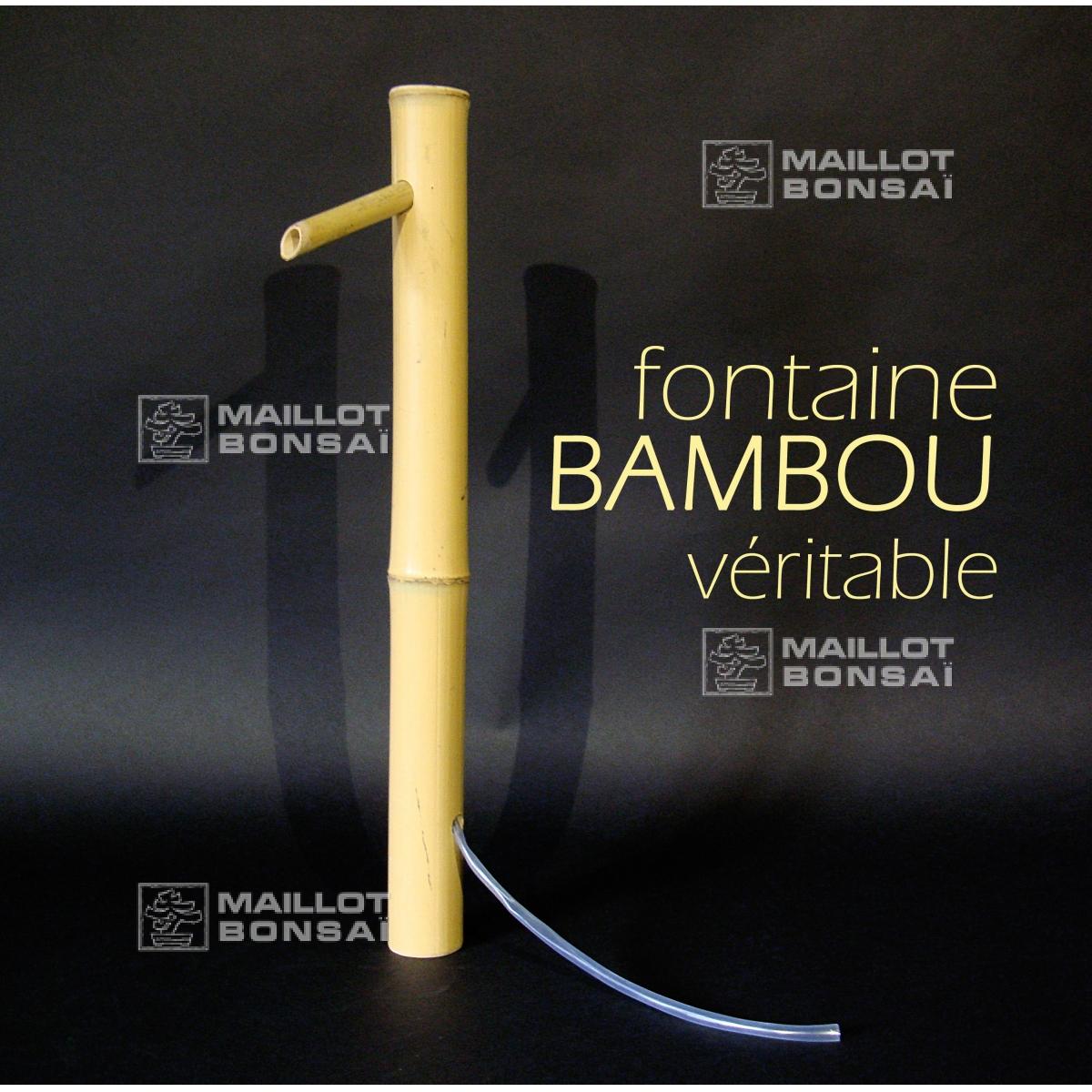Bambous Bec Verseur De Bassin Tsukubai De Maillot-Erable ... concernant Fabriquer Un Tsukubai