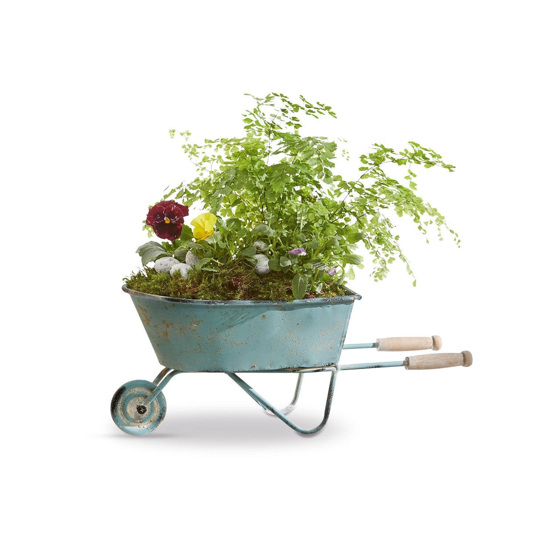 Brouette Décorative Morla encequiconcerne Brouette Décorative Pour Jardin