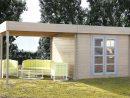 Cabane Jardin Toit Plat encequiconcerne Abri De Jardin Pas Cher Occasion