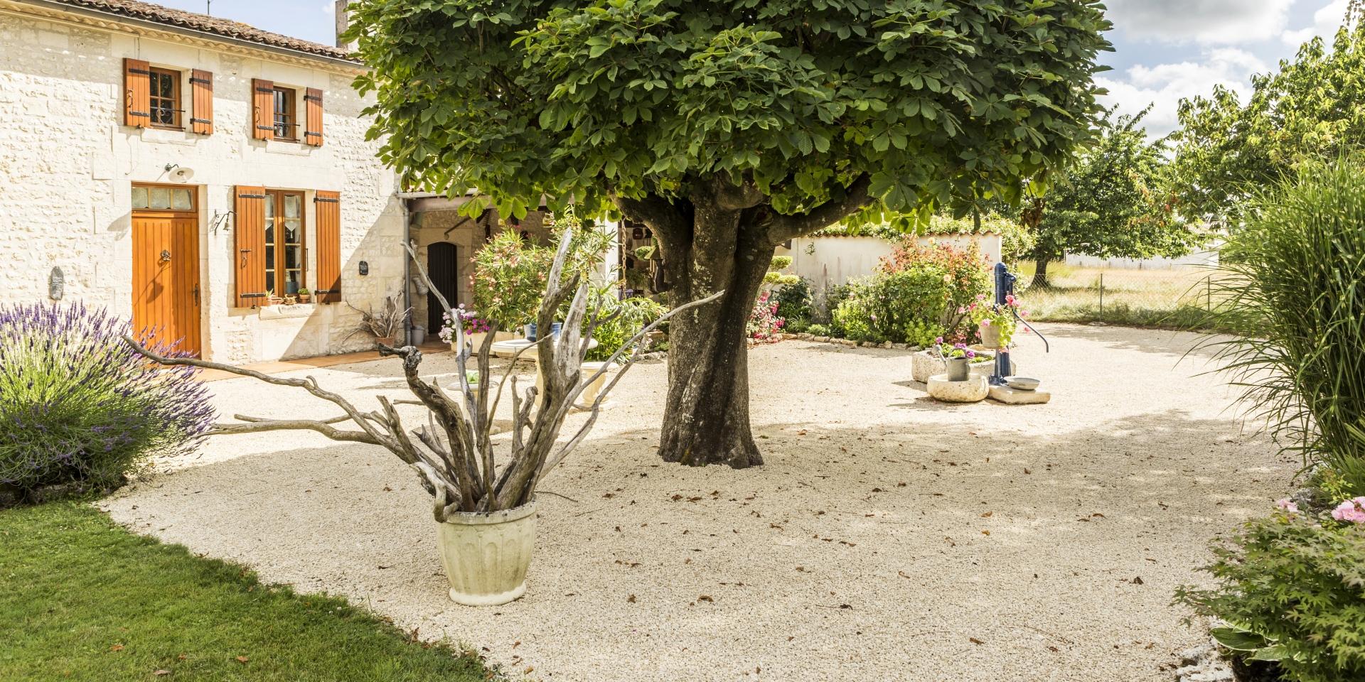 Daniel Moquet, Aménagement Cour, Allée De Jardin Et Terrasse ... destiné Amenagement Cour Devant Maison