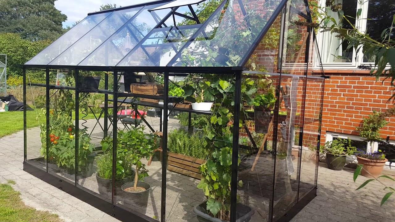 Serre De Jardin 6,4M² Noire En Verre Trempé Qube - Halls tout Serre Polycarbonate Oogarden