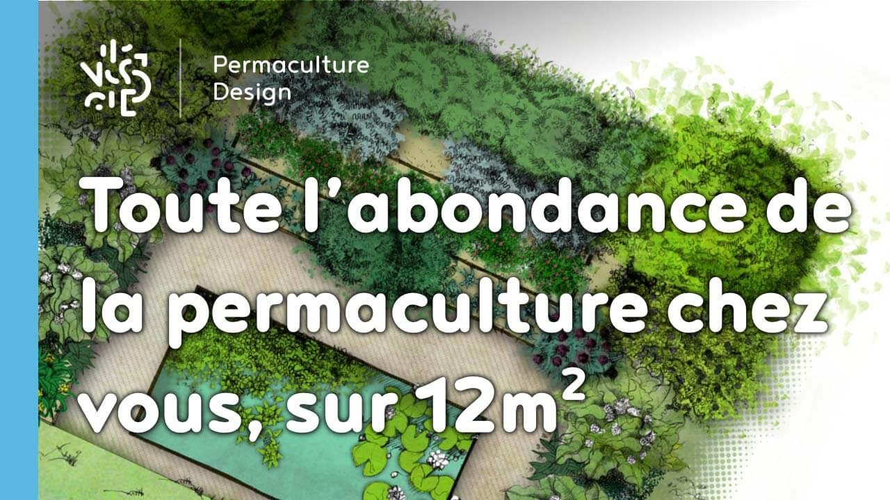 Toute L'abondance De La Permaculture Chez Vous, Sur 12M2 Et ... avec Aménager Un Petit Jardin De 20M2
