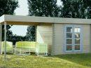 Unique Porte De Garage Bois Brico Depot | Abri De Jardin Pvc ... tout Abri Jardin Bois Brico Dépôt