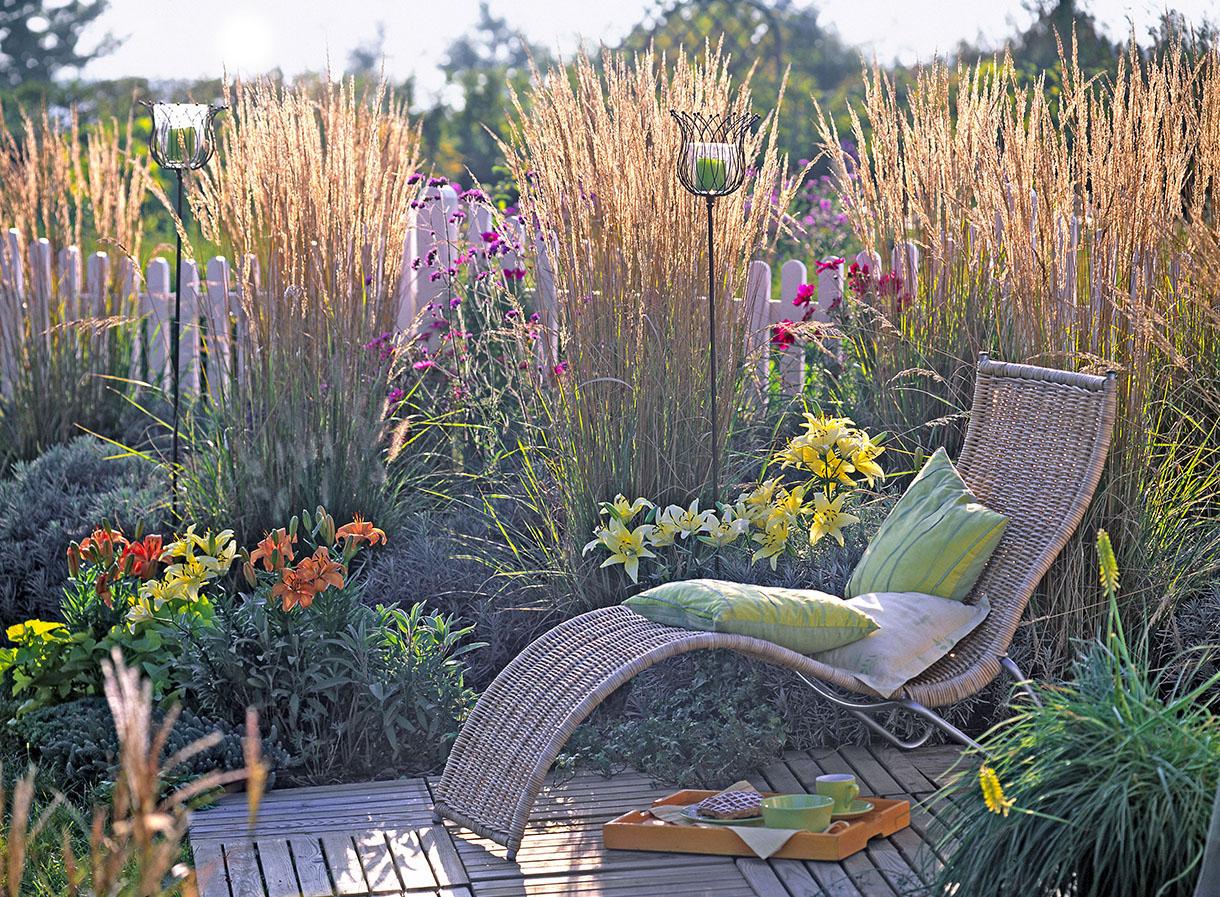 12 Idées De Brise-Vue Pour Jardin [Plante, Haie, Bambou ... tout Cache Vue Jardin