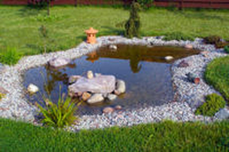 Bassin De Jardin : Comment Le Construire avec Faire Un Bassin De Jardin