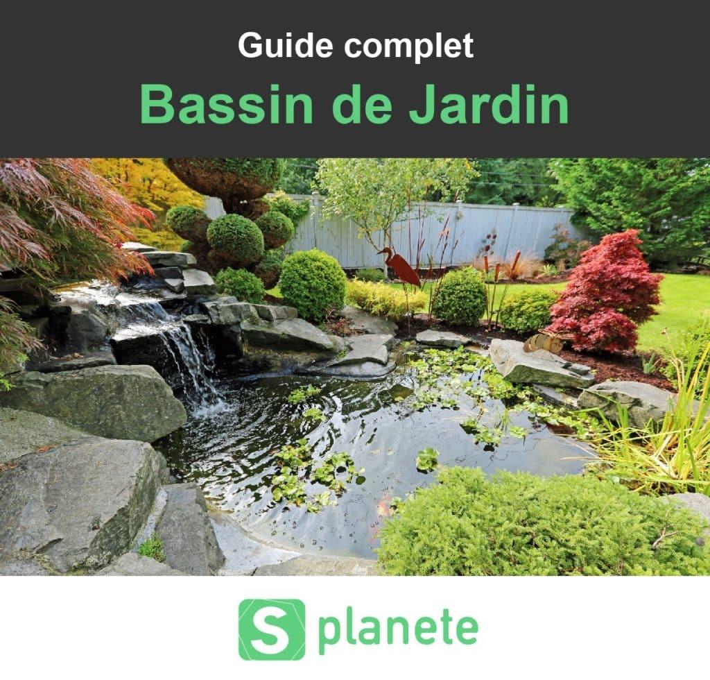 Bassin De Jardin : Construire, Aménager Et Entretenir ... intérieur Bassin De Jardin Préformé Grande Taille