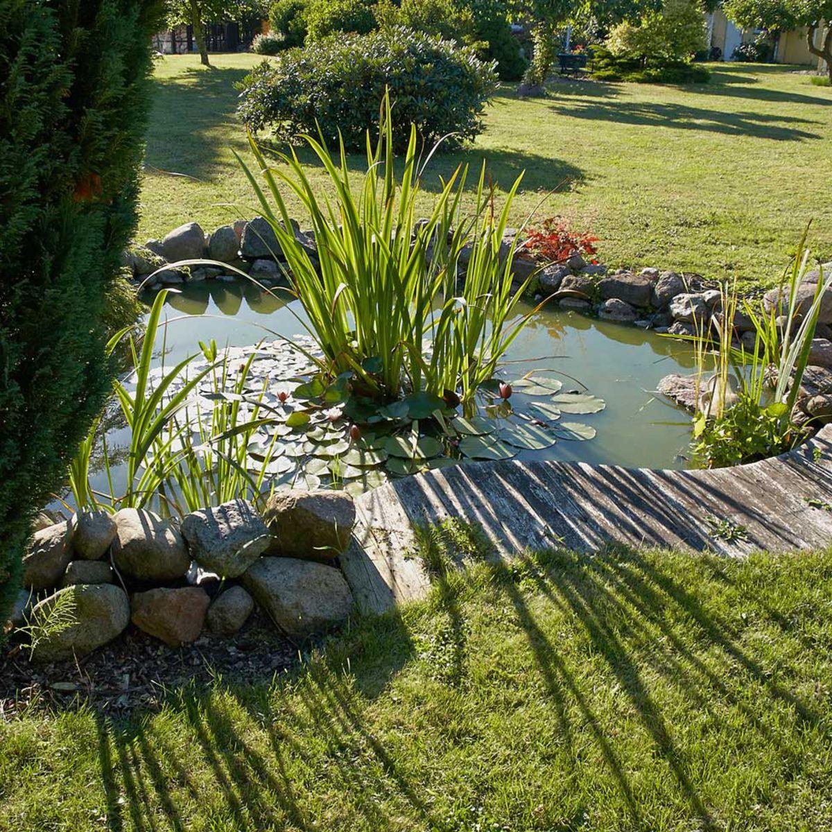 Bassin De Jardin Préformé, Hors Sol… On Plonge : Femme ... tout Petit Bassin Pour Jardin