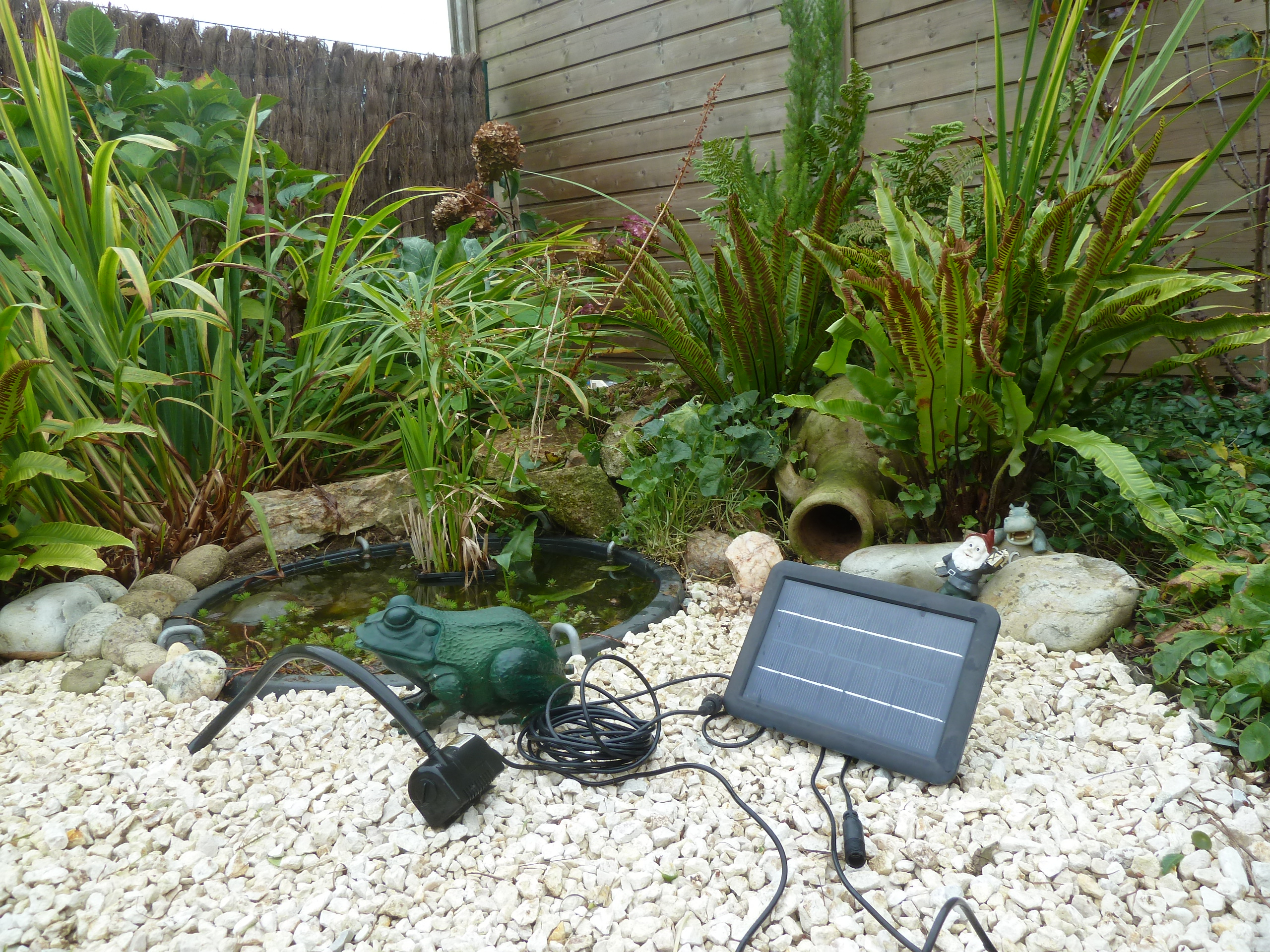 Bassin De Jardin Sans Electricite tout Petit Bassin Pour Jardin