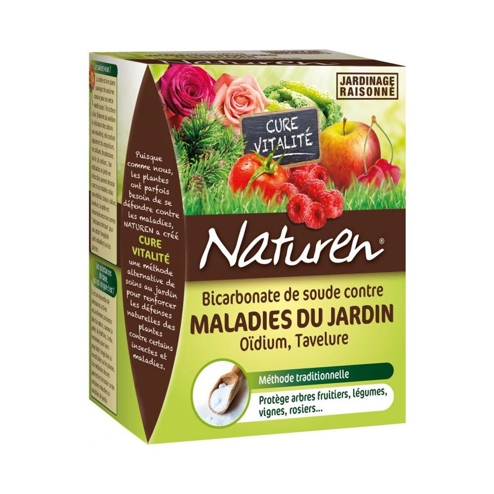 Bicarbonate De Soude - Traiter - Entretenir - Cour Et Jardin concernant Bicarbonate De Soude Jardin