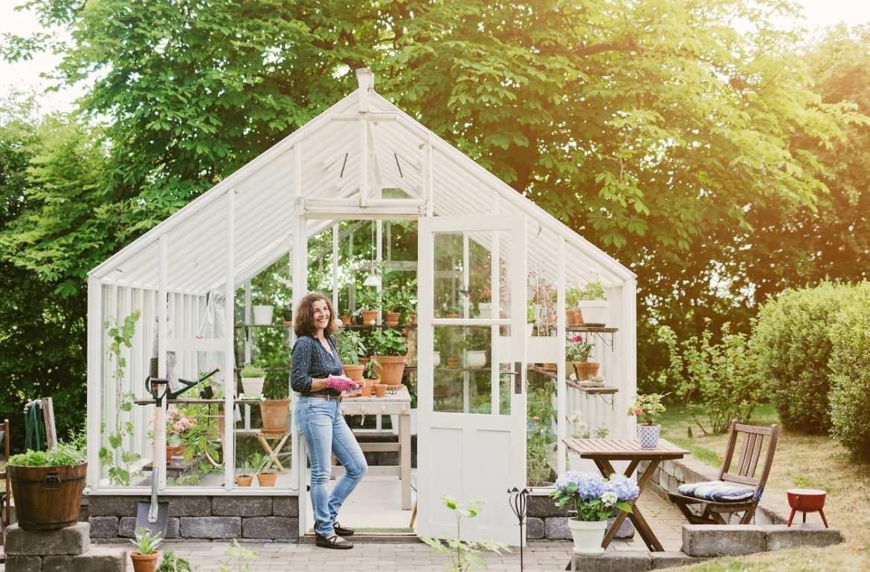 Bricolage En Janvier : Créer Une Serre Au Jardin - Bricofamily avec Serre De Jardin Bricomarché