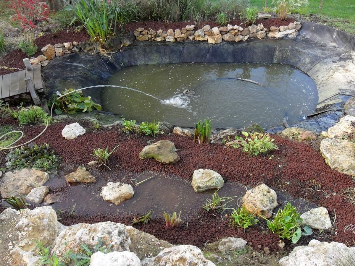 Comment Aménager Un Bassin Dans Son Jardin ? dedans Petit Bassin Pour Jardin