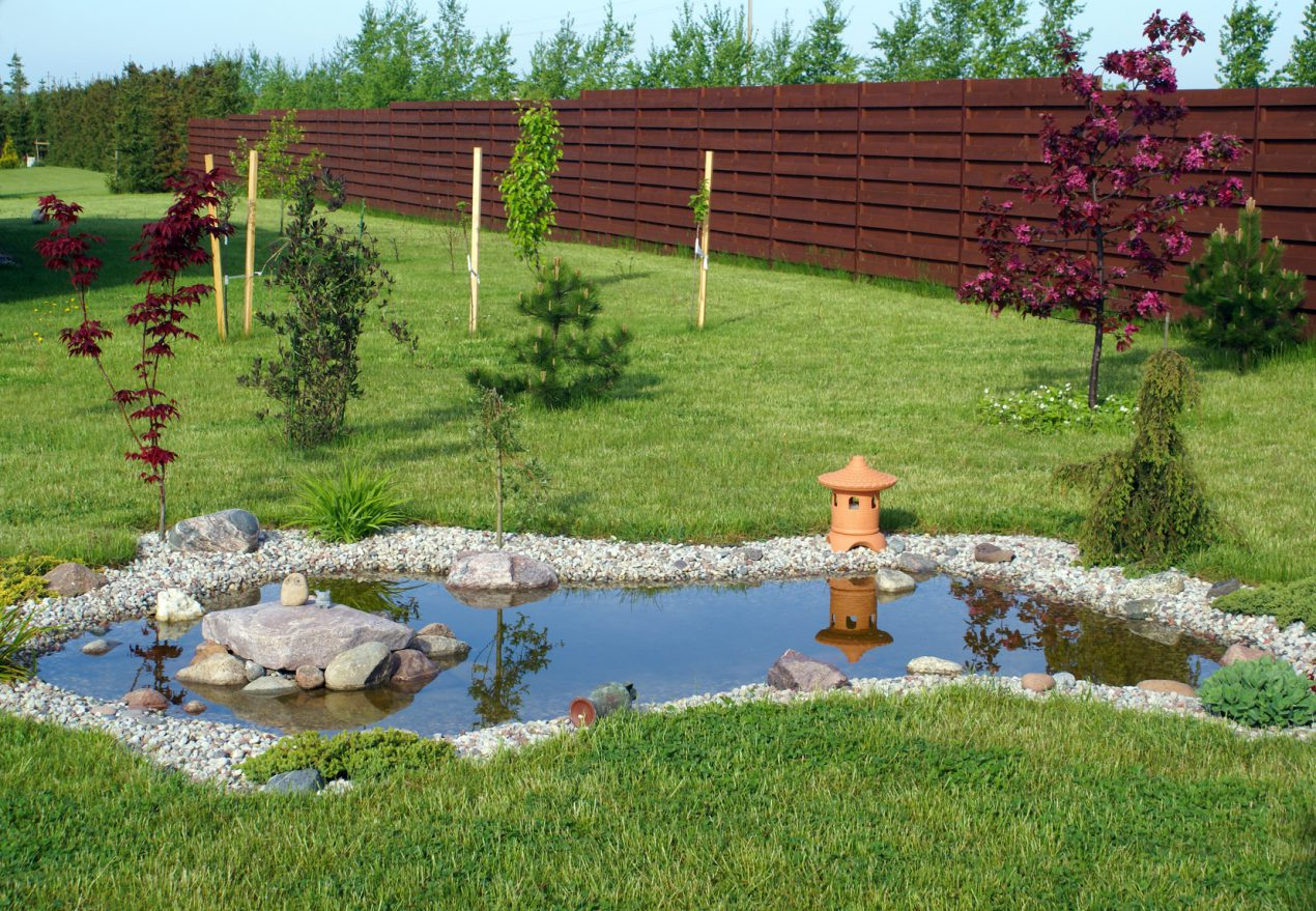 Construire Un Bassin De Jardin En 7 Étapes - Le Tuto De Mon ... serapportantà Faire Un Bassin De Jardin