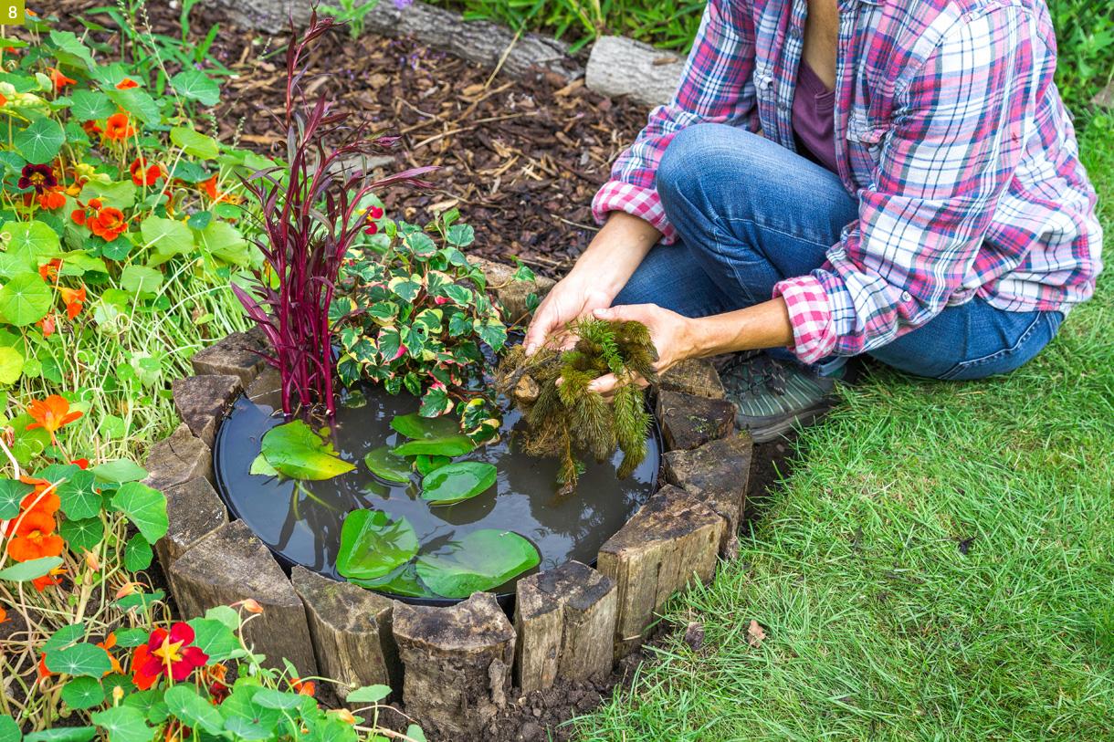 Créer Un Mini-Bassin En 2 Heures Chrono Dans Votre Jardin ... avec Faire Un Bassin De Jardin