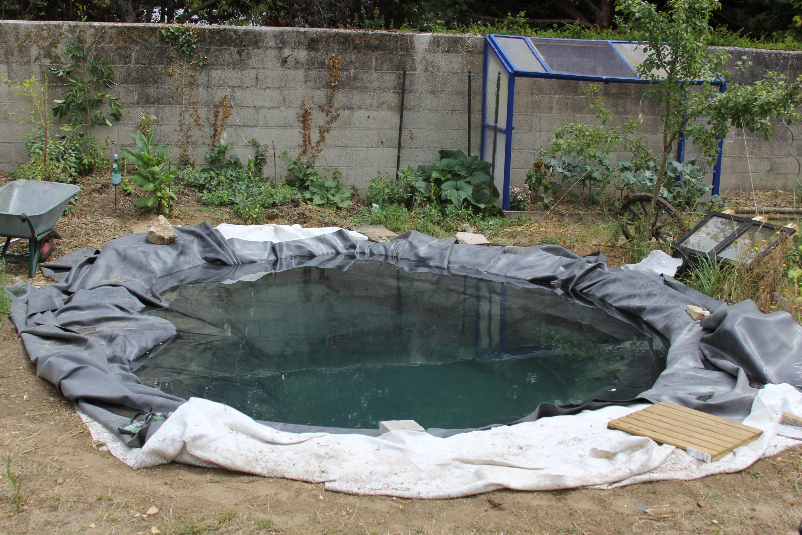 Faire Un Bassin Artificiel Dans Son Jardin - Aquaponie serapportantà Faire Un Bassin De Jardin
