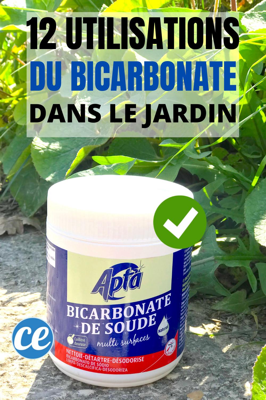 Le Bicarbonate De Soude, On En Connaît Tous Les Usages À La ... avec Bicarbonate De Soude Jardin
