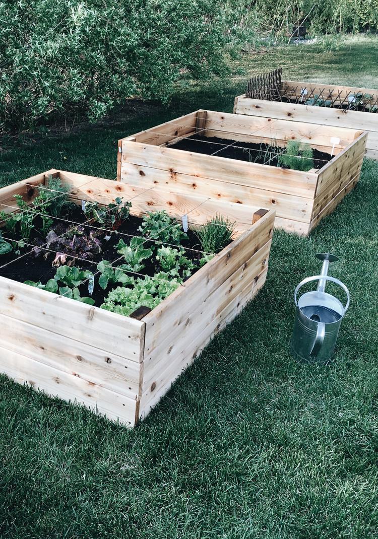 Le Potager En Carrés (Square Foot Garden) - Trois Fois Par Jour serapportantà Bac À Jardiner