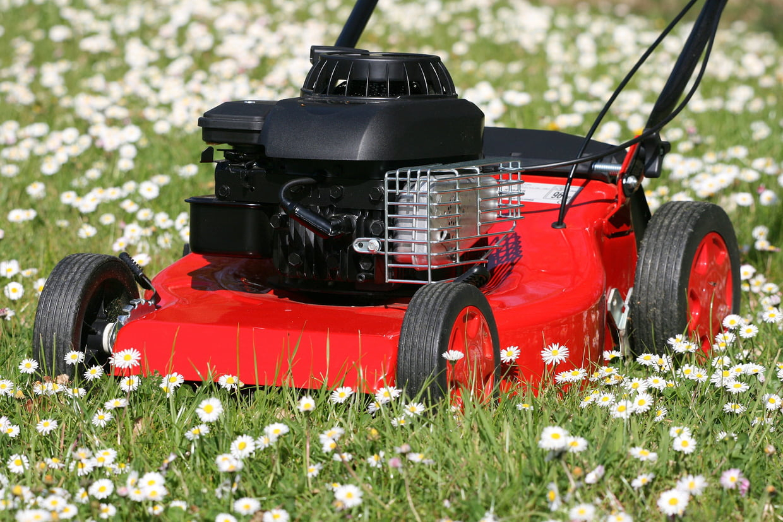 Meilleure Tondeuse Thermique : Les Bons Modèles À Choisir avec Tondeuse Jardin Pas Cher