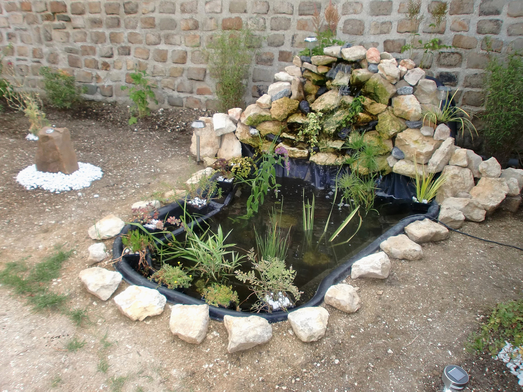 Petit Bassin De Jardin Pas Cher Merveilleux Bassin De Jardin ... concernant Petit Bassin Pour Jardin