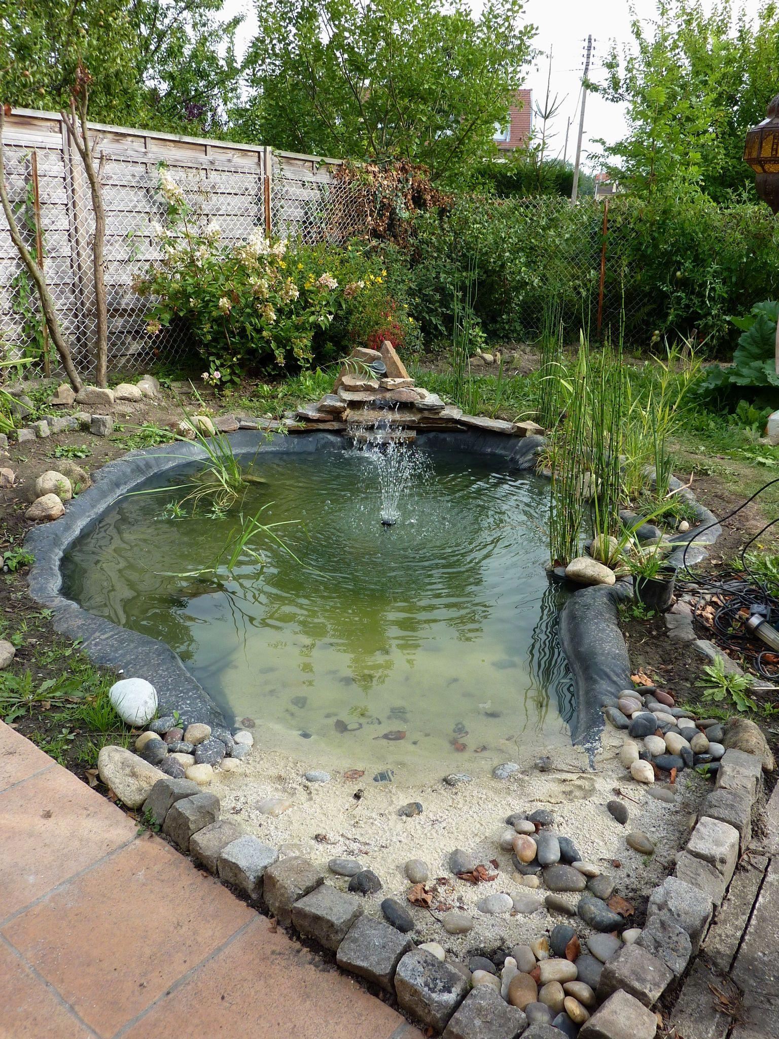 Petit Bassin De Jardin Pas Cher Nouveau 39 Bassin De Jardin ... intérieur Petit Bassin Pour Jardin