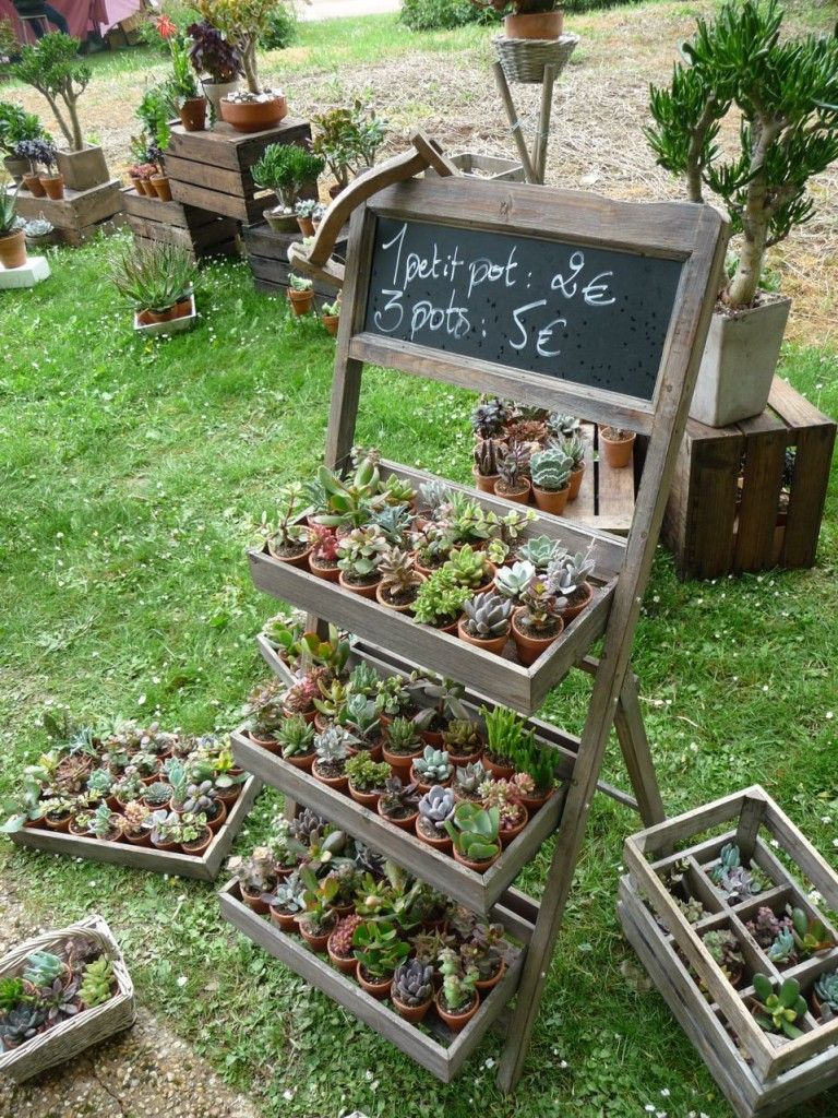 Petites Étagères Pour Un Maximum De Plantes Sur Un Minimum ... intérieur Etagere De Jardin Pour Plantes