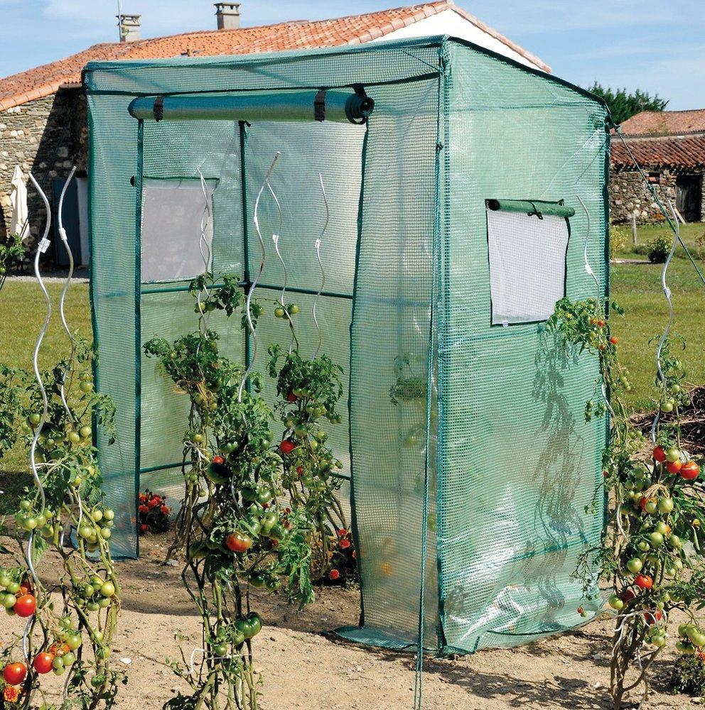 Serre Tomate Grand Modelé Janyflore pour Serre De Jardin Bricomarché