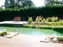 Baignade Naturelle Haute Garonne | Bionova à Piscine Haute Garonne