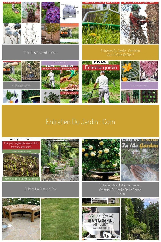 Entretien Du Jardin : Combien Va-T-Il Vous Coûter ? #pelouse ... à Tarif Entretien Jardin