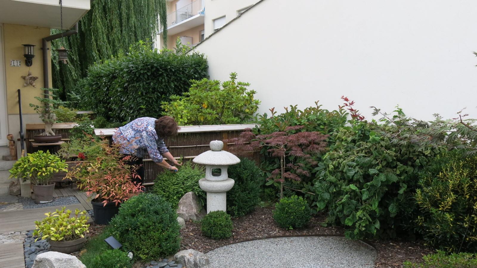 Insolite. [Diaporama] Un Havre De Paix Japonais En Plein ... concernant Jardin Japonais Alsace