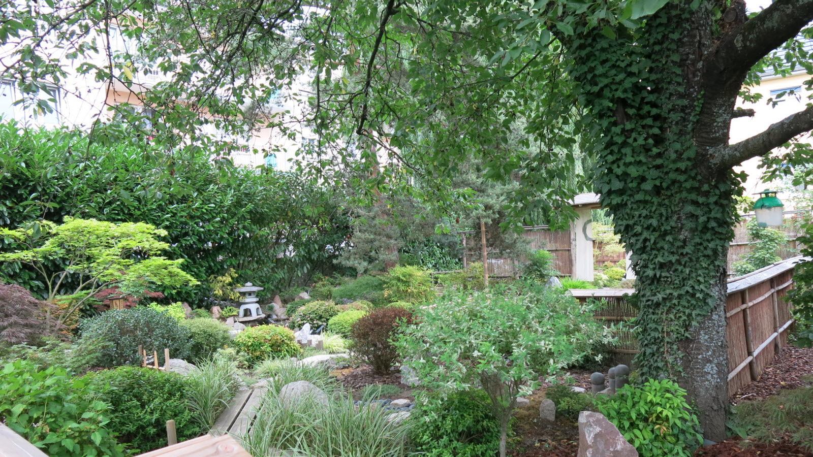 Insolite. [Diaporama] Un Havre De Paix Japonais En Plein ... serapportantà Jardin Japonais Alsace