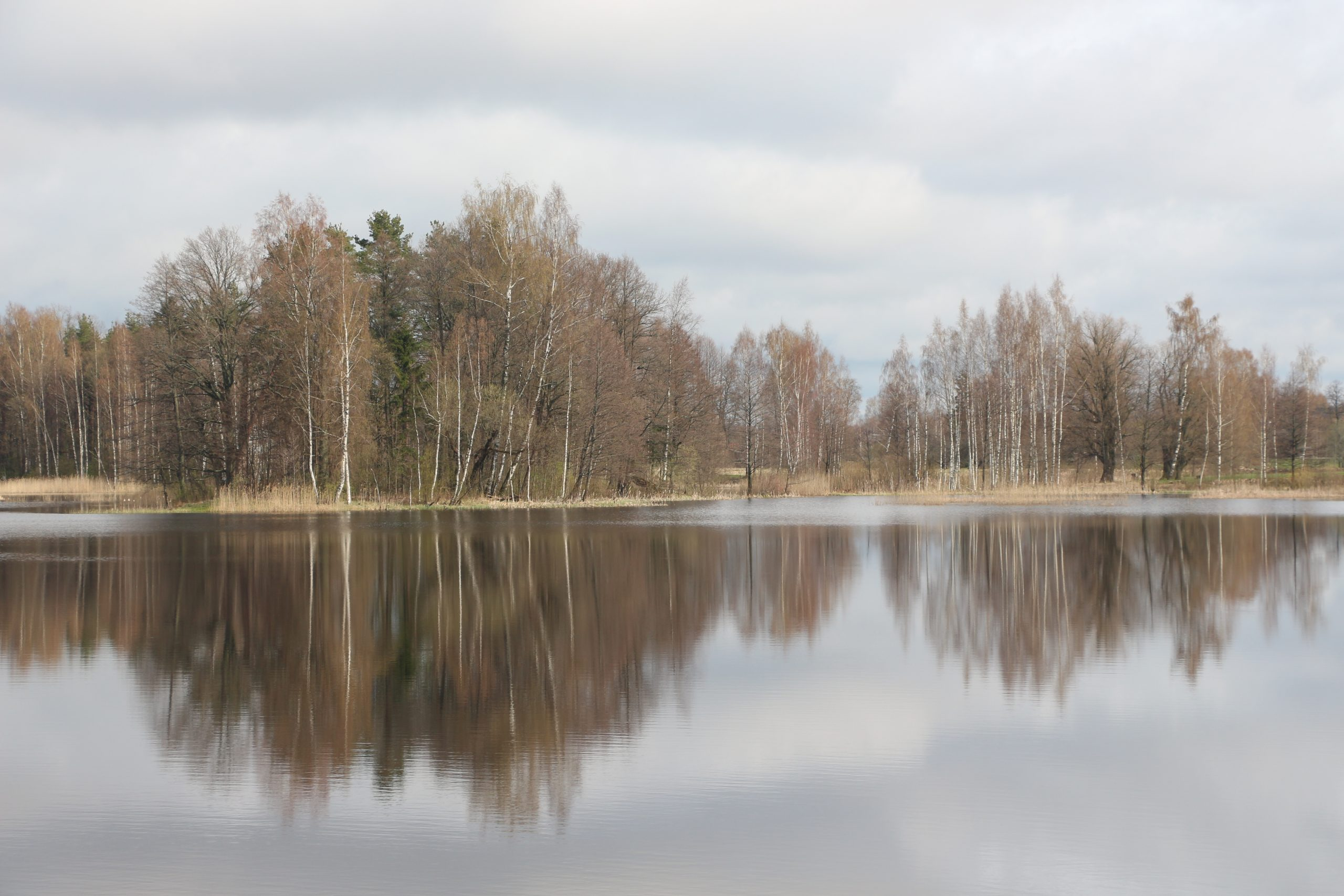 Lettonie - Lituanie - Estonie   Soleader-On-The-Road encequiconcerne Roulotte De Jardin Narva