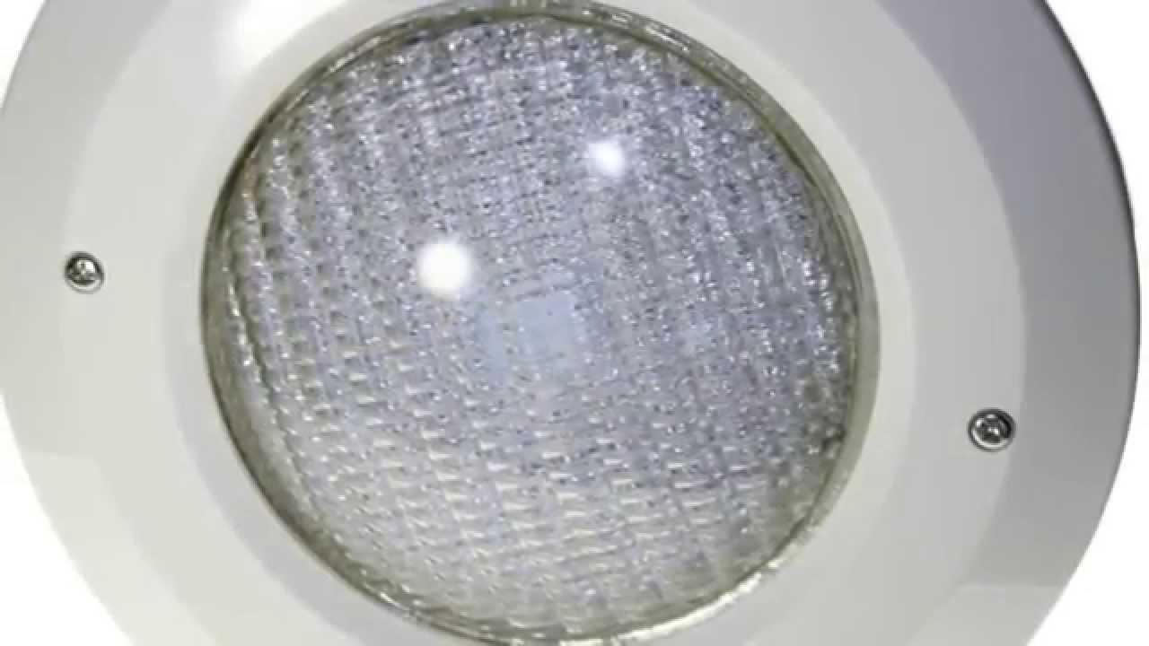 Niche Pour Projecteur Par56, Blanc concernant Changer Ampoule Piscine